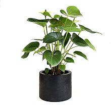 Dekorácie - Čierny betónový kvetináč - 11105501_