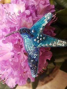 Odznaky/Brošne - Kolibrík (Modrá) - 11112160_