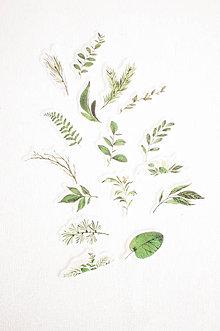 Papier - Maľované nálepky, rôzne druhy (Greenery) - 11112422_