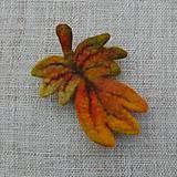 Odznaky/Brošne - ...plstená brošňa - jesenný list... - 11116088_