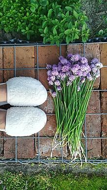 Obuv - VLNIENKA barefoot papuče na doma 100% ovčia vlna MERINO BARANČEK prírodný smotanová lemovka - 11123774_
