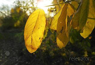 Fotografie - Posledný letný západ slnka - 11125673_