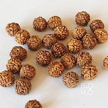 Korálky - Rudraksha 8 mm - 11129645_