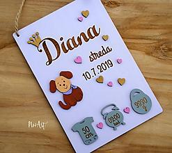 Dekorácie - Tabuľka pre bábätko s údajmi o narodení dievčatko 8 - 11132402_