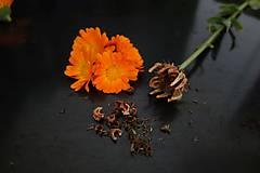 Potraviny - domáce semienka nechtíka lekárskeho 2019 - 11131132_