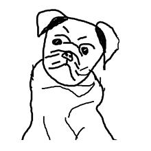 Obrazy - Portrét zvieratka (na objednávku) - 11133200_