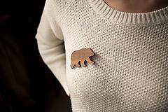 Odznaky/Brošne - Drevená brošňa medveď - 11136227_