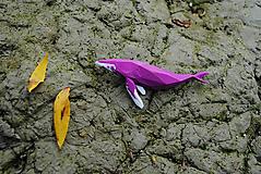 Brošne - Vráskavec fialový - 11140963_