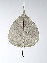 Kresby - Bodhi tree - khaki, ve. A4 - 11144111_