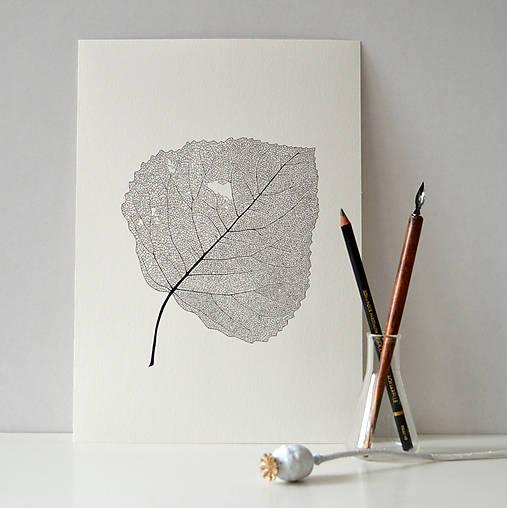 List topolu - černobílý, vel. A4