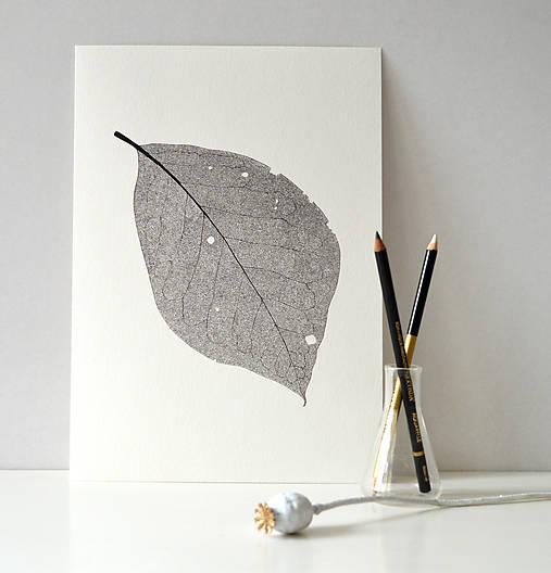 List ořechu - černobílý, vel. A4
