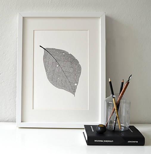 List ořechu - černobílý, vel. A3