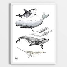 Detské doplnky - Art Print - veľryby - 11161062_