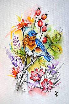 Obrazy - Vtáčikový - 11166937_