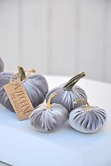 Dekorácie - zamatové tekvičky, šedé, sada č.2 - 11165204_