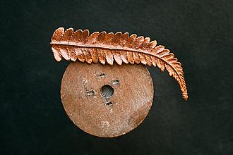 Odznaky/Brošne - Brošňa papraď - 11174253_