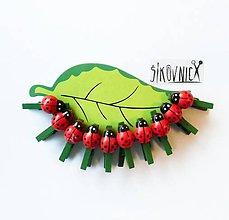 Polotovary - Drevené lienky, mini štipčeky, 2,5 cm, sada 10 ks - 11190173_
