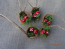 Dekorácie - Oriešky muchotrávky v machu - 11195412_