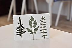Papiernictvo - Pohľadnica - ,Fern, - 11199828_