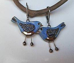 Náušnice - Keramické náušnice - Vtáčiky modré - 11203856_