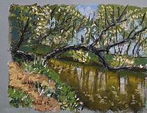 Kresby - u řeky Malše - 11202800_