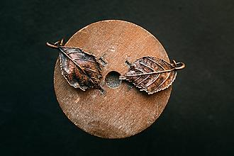 Náušnice - Náušnice pagaštan konský - 11204526_