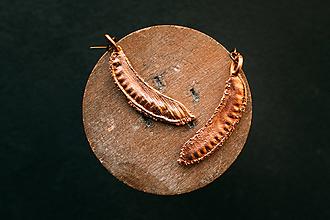 Náušnice - Náušnice prútnatec metlovitý plod - 11216386_