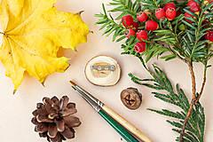 Odznaky/Brošne - Ručně malovaná brož se spící polární liškou - 11216691_