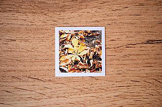 Papiernictvo - Fotonálepka - Jesenné listy - na zápisník DENNÉ ZÁPISKY - 11218156_