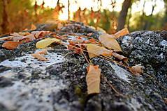 Fotografie - Jesenná V. - 11224218_