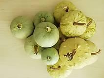 Dekorácie - Tekvičky okrasné - zelené - 11225187_
