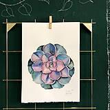 Kurzy - WORKSHOP akvarelovej maľby, SUKULENTY - 11223538_