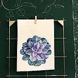 Kurzy - WORKSHOP akvarelovej maľby, SUKULENTY - 11223546_