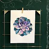 Kurzy - WORKSHOP akvarelovej maľby, SUKULENTY - 11223548_