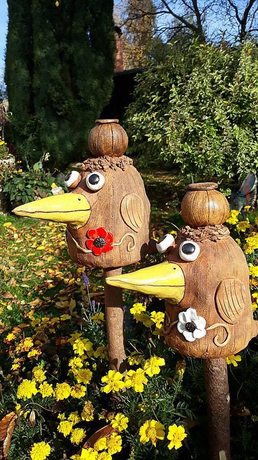Pták Loskuták s makovicí
