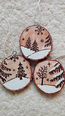 Dekorácie - Drevené vianočné ozdoby - sada Prišla zima - 11241377_