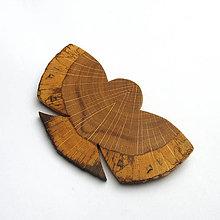 Odznaky/Brošne - Drevená brošňa - dubová sova - 11255903_