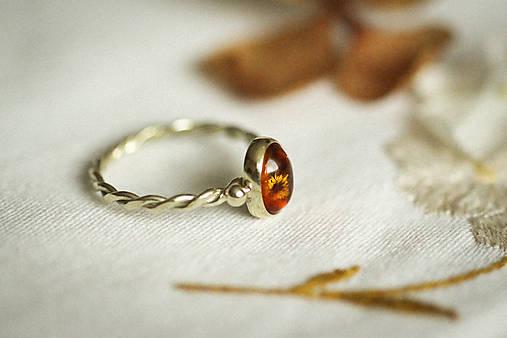 Zlatý filigránový prsteň - Splynutie (Jantár)