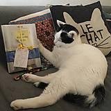 Knihy - Plamienok: Kniha môjho šťastného domova (Lucia Haquel) - 11259836_