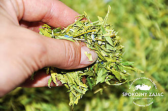 Potraviny - čaj - JASTRABINA - bylinka - 11259393_