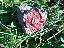 Minerály - colection minerais 108409891646 - 11267261_