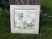 Obrázky - biela ruža - 11264783_