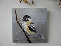Obrazy - Z vtáčej ríše 1 - 11268575_