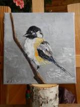 Obrazy - Z vtáčej ríše 1 - 11268581_