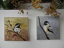 Obrazy - Z vtáčej ríše 1 - 11268588_