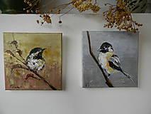 Obrazy - Z vtáčej ríše 1 - 11268590_