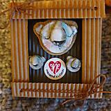 Odznaky/Brošne - Ľadový medvedík - brošňa + náušnice - 11274720_