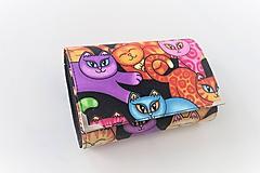 Peňaženky - Barevné kočičky - i na karty 13 cm - 11277129_