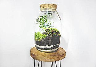 Nádoby - Rastlinné terárium - 11287209_