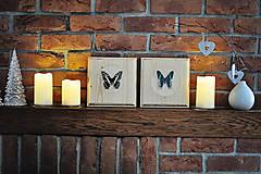 Obrázky - Papilio demodocus- motýľ na drevenej podložke - 11285626_